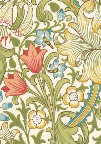MOR_Garden-Lily_210398
