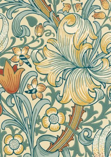 MOR_Garden-Lily_210401