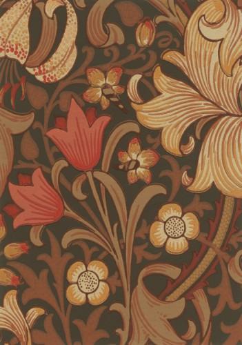 MOR_Garden-Lily_210402
