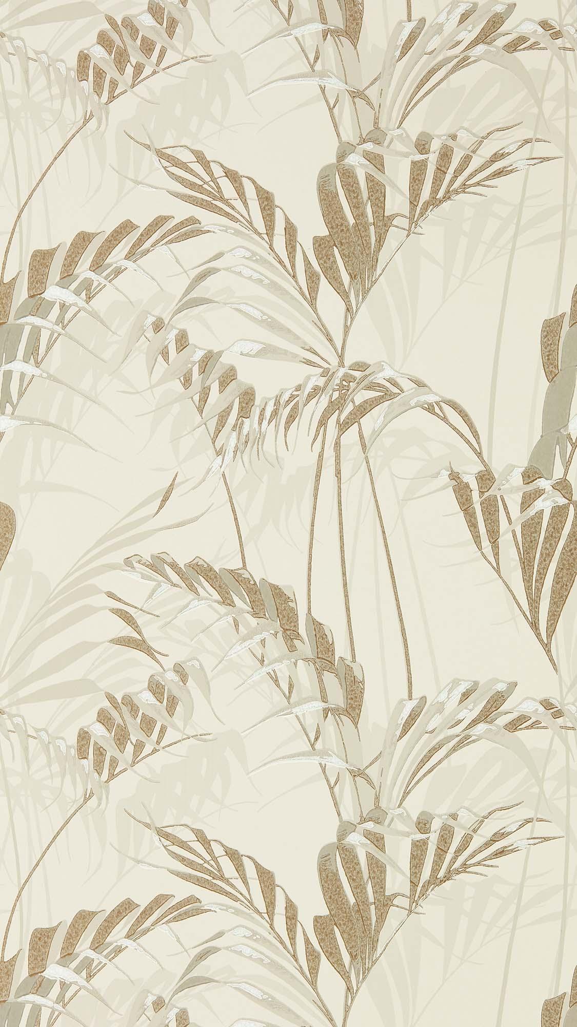 壁紙 Palm House 216644