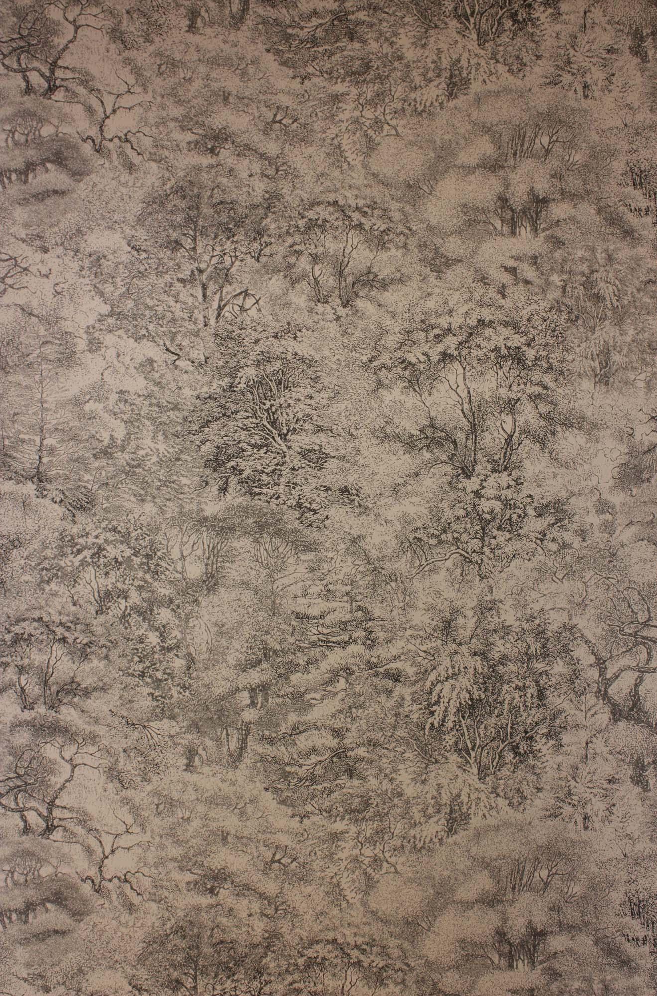 壁紙 Folyo W6757-05