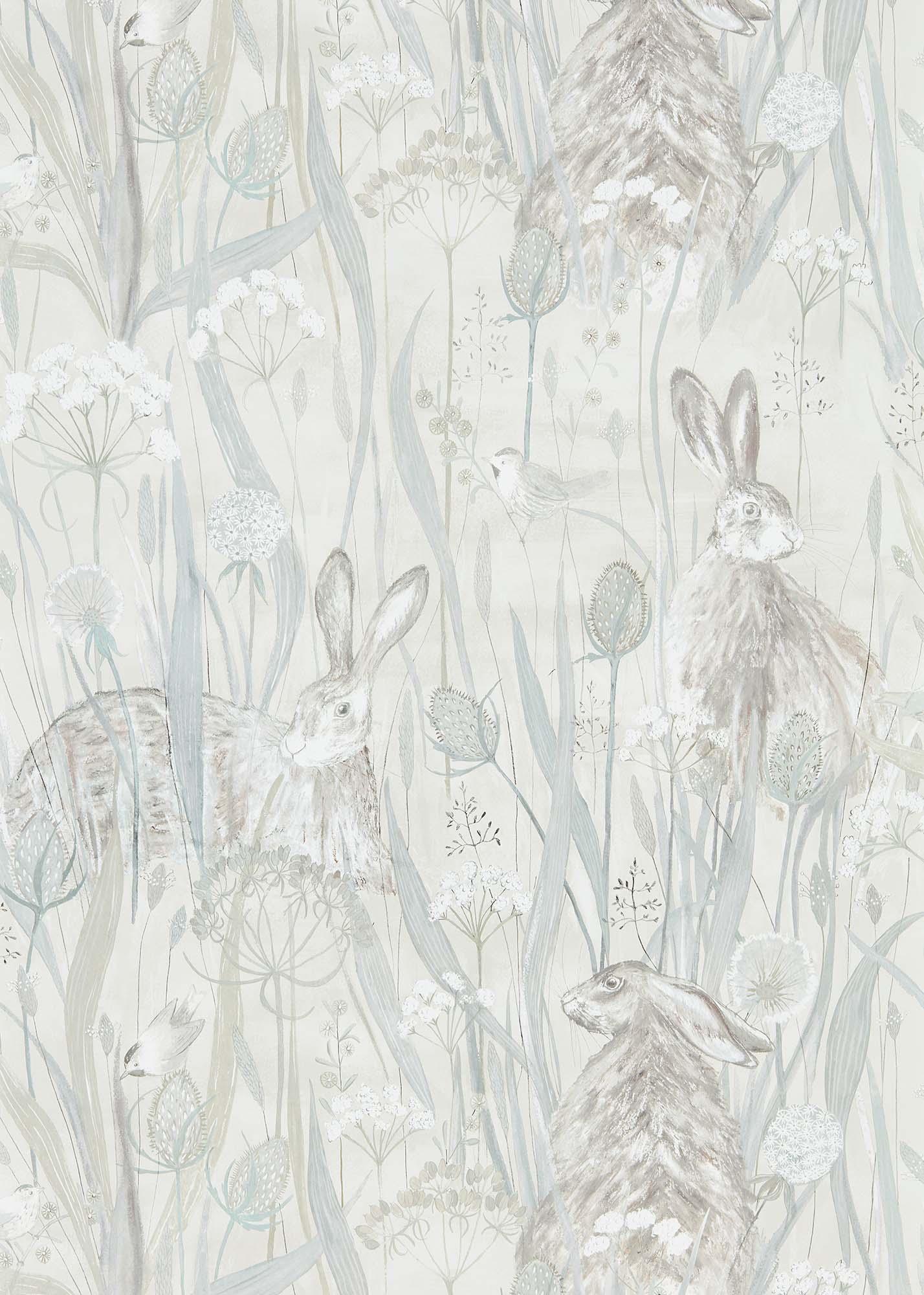 壁紙 Dune Hares 216518